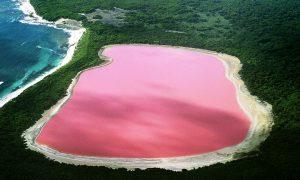 Розовото езеро Хилиър (Lake Hillier)