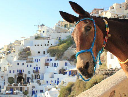 Средиземноморският блян: остров Санторини